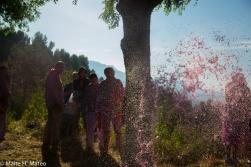 2wine festiva TESTISl Haro, La Rioja, Spain-14