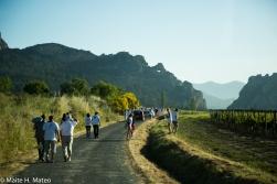 2wine festiva TESTISl Haro, La Rioja, Spain-3