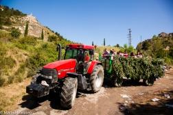 2wine festiva TESTISl Haro, La Rioja, Spain-84
